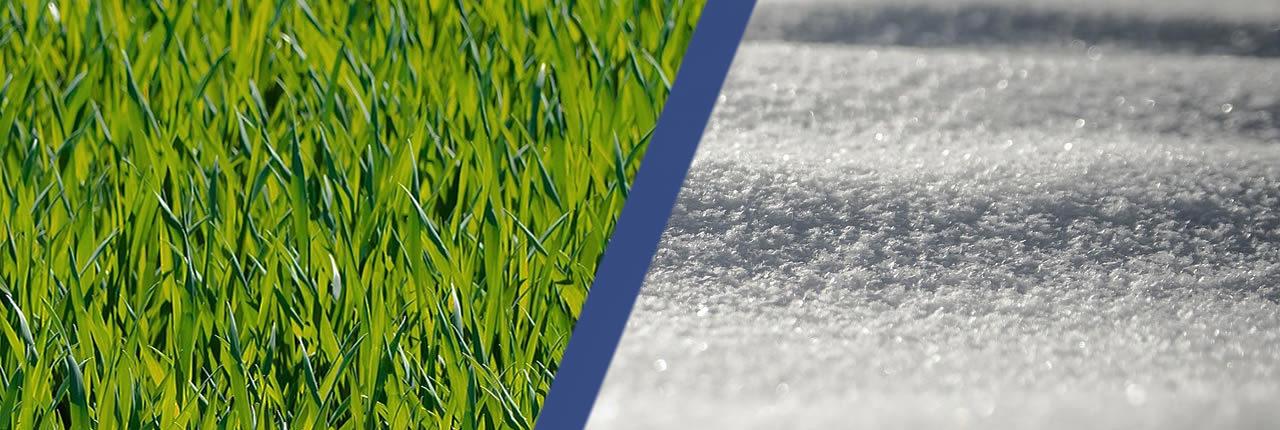 Madison Lawn Care And Snow Removal Savingutime Llc